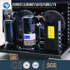 Compressor/ Copeland Compressor/ Copeland Condensing Unit for Cold Room