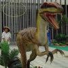 Jurassic Dinosaur Skeleton Model for Amusement Theme Park (FLDC)