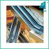 Indoor Escalator with Outdoor Commercial Heavy Duty Vvvf Escalator