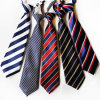2017 Custom Polyester Lovely School Ties (A790)