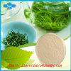 Raw Material Egc Pharmaceutical Epigallocatechin for Cancer Treat