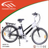 250W Rear Brushless Folding Electric Bike