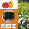 Qfg Supreme Humic Star Humic Acid Potassium Humate