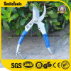 Carbon Steel Flower Shear Garden Pruning Scissor