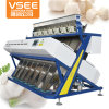 Excellent Quality High Output Vsee Macadamia Nuts CCD Color Sorter Machine