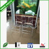 Clear Chiavari Wedding Napoleon Chair Transparent