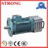 Construction Brake Motor for Hoist, Crane Hoisting Motor