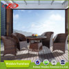 Rattan Dining Set/Outdoor Dining Table (DH-6067)