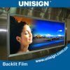 Pet Backlit Film, Front Print Pet Backlit Film, Front Print Pet Backlit Film for Light Box Advertising