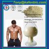 Sex Protein Supplements White Powder Sex Enhancement Yohimbine HCl
