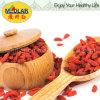 Medlar Lbp Certified Gojivberry Organic Goji
