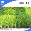 Soccer Artificial Turf Grass with PE Yarn