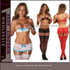Ladies Sexy Lingerie Lace Nightwear Bra Set Panty Underwear (TML2001)