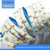 2835 FPC LED Strip 12W/M DC12V House Decoration Light
