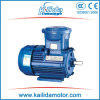 15kw/20HP Explosion-Proof Three Phase Induction Motor
