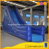 Hot Sale Blue Inflatable Water Slide in Water Play Equipment (AQ09250)