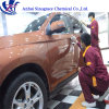 Sio2 Ceramic 9h Nano Coating for Car Detailing