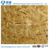 High Quality OSB1, OSB2, OSB3 with Best Price