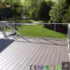 Antiseptic Aczoiling Outdoor Deck WPC