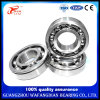 OEM Fast Low Noise Credible Brand Deep Groove Ball Bearing 6204 6304 6404