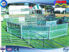 Hot Sale Cheap Cattle Panels (FLM-CP-020)