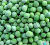 IQF Frozen Green Peas for Exporting