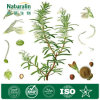 100% Natural Water Soluble Rosemary Extract Powder