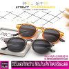 3185 Unisex Retro Style Metal Plug Pin Temples Sunglasses