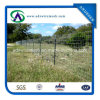 Wholesale 6ft, 7ft, 12ft T Fence Post / Metal T Post