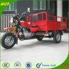 High Quality Chongqing Adult Pedal Trike