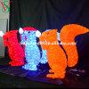 3D Motif Acrylic Squirrel Lights