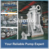 Stainless Steel Non-leakage Chemical Hollow Shaft Canned Motor Shield Pump