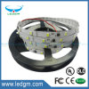 2017 Hot Sale 5050 Ww (6500-7000k) 30LEDs /60LEDs//96LEDs/ Strip LED Light 3 Years Warranty Rgbww Output LED Strip Light High Lumen