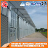 Agriculture Multi Span Hydroponics Polycarbonate Sheet Green House for Vegetable Growing