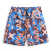 2017 Fashion Men Swim Shorts Beachwear Swimming Trunk