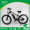 Hi Power Dirt E Fat Snow Bike with 500W Bafang Motor