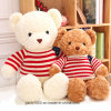 Soft Toy Bear Teddy with Clothing