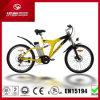 6V10ah 250W MTB Electric Mountain Bike for Sale