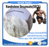 Anabolic Steroid Powder Nandrolone Decanoate Deca Durabolin for Fast Fat-Loss Musle-Building
