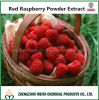 Factory Supply Antioxidant Ingredient Red Raspberry Powder Extract with Ellagic Acid/Raspberry Ketone