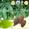 Lower Blood Pressure Herb Medicine Scaphium Scaphigerum