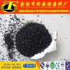 Coconut Shell Activated Carbon as Bio Filter Media for Water Purification