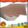 China Bb/Bb Okoume Plywood/Poplor Combi Plywood