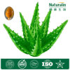 Natural 100: 1 200: 1 Aloe Vera Extract (20%~50% barbaloin aloin) Nat-008