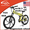 Folding Electric Mountain Bicycles