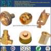SGS Certified Precision Brass Forged Fittings