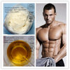 Trenbolone Enanthate Powder CAS 472-61-546 Effective Muscle Mass Steroids