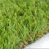 High Quality Landscaping Artificial Grass for Your Backyard (AS)