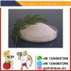 High Quality Finasteride/ Proscar for Prevent Hair Loss CAS98319-26-7