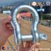Forged Dacromet Surface High Quality Bow Shackle